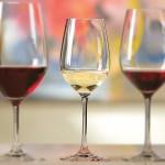 Schott Zwiesel Tritan Forte Chardonnay 6-Pk