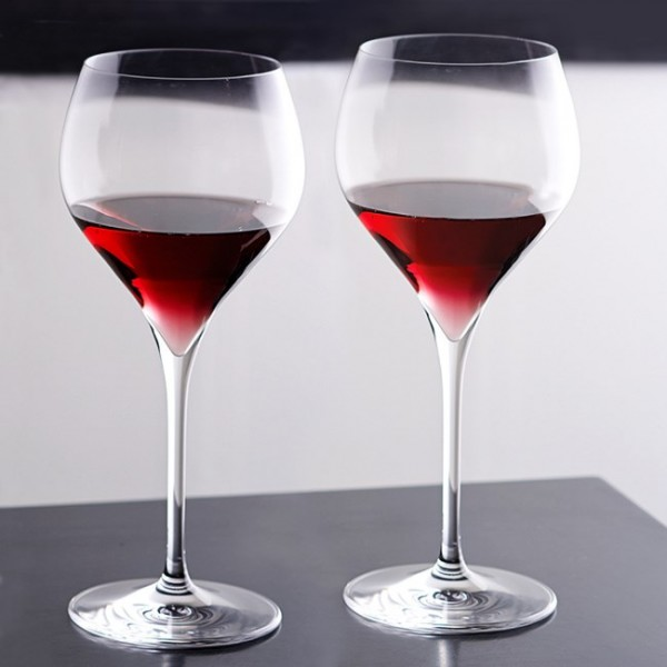 Adina Prestige Burgundy Wine Glasses Set of 2