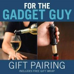 For the Gadget Guy Gift Pairing